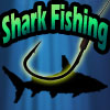 Pesca allo Squalo - Shark Fishing